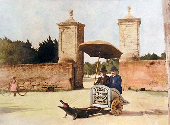 W.S. Jennings in Alligator Cart at St Augustine